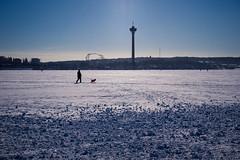 P1000846 (vargandras) Tags: people landscape cityscape view frozen lake snow näsijärvi särkänniemi tampere sky blue sunlight backlight scenery suomi finland