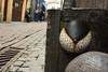 Intra Larue 960 (intra.larue) Tags: belgique belgium bruxelles urbano urbana urban urbain téton teta street seno sein pecho moulding moulage moldeado intra brust breast boob arte art
