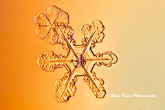 IMG_3171 (nitinpatel2) Tags: snowflakes winter snow macro crystal nature nitinpatel