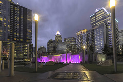 Romare Bearden Park (tshabazzphotography) Tags: charlotte northcarolina south city citylights citypark skyline nightphotography nightlife light afterhours architecture buildings tall skyscrapers urban park grass building road sky skyscraper