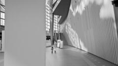 Tokyo 2017_327bn2 (c a r a p i e s) Tags: carapies cityscapes 2017 nikondf asia japan tokyo marunouchi tokyoforum bw blackwhite blancoynegro architecture arquitectura fotografiaurbana urban urbanphotography urbvanidad urbvanity urbanidad urbanphoto streetphoto streetlife streetphotography
