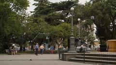 The Plaza (renaofotografia) Tags: city pelotas brazil history daily photojournalism cotidiano