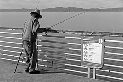 choose healthy fish (its.my.turn) Tags: pier fishing losangeles contaminated california