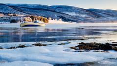 Boat Wreck on the Coast (Mark Ledingham Photography) Tags: scandinavia arctic northernnorway boatwreck norwegiansea landscape senja ice moon sea seascape sky snow winter shipwreck fujifilmxt1 fujifilm mountains water fog frost boat