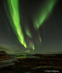 Gjesvær tulet 27 (sirpamak) Tags: gjesvær norway norja revontulet northernlights nordlys nordkapp syksy autumn auroraborealis aurora