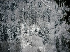 le chemin (blogspfastatt (+4.000.000 views)) Tags: blogspfastatt winter hiver neige snow paysage landscape