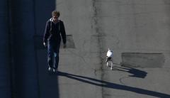 Re-recadrée… (Jean-Charles Clavé) Tags: littledog youngman ombres asphalte bitume walking