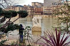 277 Paris en Février 2018 - Sculpture sur le Quai Saint-Bernard (paspog) Tags: paris france seine fleuve statue sculpture rivière fluss river quaisaintbernard crue inondation flood février februar february 2018