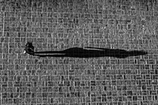 The big shadow.