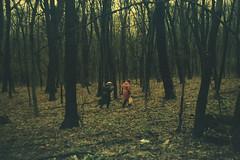 (Pavlo Danilevych) Tags: praktica prakticamtl prakticamtl3 mtl mtl3 film analog ukraine україна green fuji industrial fujiindustrial iso400 київ kyiv kiev