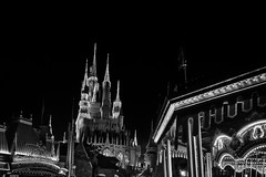Dream on (Sean X. Liu) Tags: disneyworld magickingdom castel carousel blackandwhite blackwhite monochrome nightphotography dreamy
