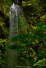 _DSC4810 (UdeshiG) Tags: bali indonesia asia waterfalls uluwatu seminyak tanahlot nikon ubud kuta paddy dogs balidogs travel traveltheworld