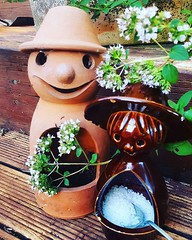Mr & Mrs Herb. Remember when Mrs Herb sat in my Mum's windowsill #memories #mementos (easegill) Tags: ifttt instagram