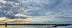 Wetlands Sunset (randyherring) Tags: ca california centralcaliforniavalley cosumnesriverpreserve elkgrove afternoon aquaticbird nature outdoor recreational waterfowl wetlands