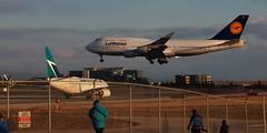 Lufthansa Boeing 747-430 D-ABTL - Toronto Pearson (edk7) Tags: olympuspenliteepl5 edk7 2018 canada ontario mississauga torontopearsonairport yyz lufthansa boeing747430 boeing747400 cn29872 2002 dabtl dresden fourengine airliner aircraft plane airplane aviation civil commercial passenger jet jetliner sunset landing generalelectriccf680c2b1fhighbypassturbofan59000lbf sky cloud enthusiast photographer fence building taxiway sign shadow