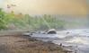 (080/18) Después de la tormenta (Pablo Arias) Tags: pabloarias photoshop photomatix capturenxd bote yate bosque palmera mar agua olas océano pafícico madera playa tambor costarica
