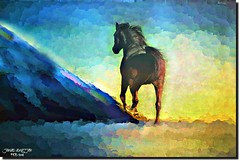 FORWARD.....GO. (jawadn_99) Tags: explore stalion horse arab horses black white horses22 fantastic supershot scout poster photography flickr favorite art animal raising galope red vivid blue interrestigness vividimagination photoart kuwait arabian gulf coth5