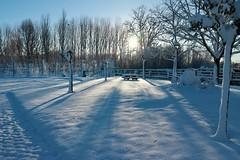 Paisaje nevado (Oubeos) Tags: cielo árbol nieve soleado blanco leonesp león lorenzana parquedelorenzana castillayleón parque arboles farola