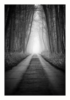Path into the uncertain