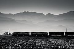 MACs and Mountains (Colorado & Southern) Tags: bnsfrailway bnsf burlingtonnorthern emdsd70mac local trains train railfanning railroad railfan railway railroads railroading rockymountains rail rr railroadtrack colorado coloradorailroads coloradotrains