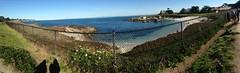IMG_2282 (mudsharkalex) Tags: california pacificgrove pacificgroveca pano panoramic panorama panoramamode panoramasetting iphonepanorama iphonepano