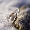 Outlander....Diana Gabaldon (ladybugdiscovery) Tags: macromonday myfavouritenovel fiction rings outlander series steel gold stone frost snow myfavouritenovelfiction square