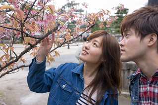 Young couple dating in spring