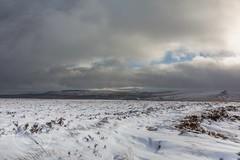 Pennine November 071 - Deer Hill to Pule Hill (Mark Schofield @ JB Schofield) Tags: south pennines pennineway peak peat snow winter landscape canon eos 5dmk4 rainbow digley meltham holmemoss holme valley hills yorkshire huddersfield