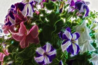 Efecto sobre flores