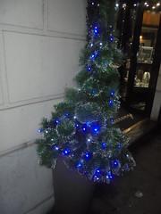 243 (en-ri) Tags: pinetto natale christmas blu luci luminarie addobbi sony sonysti verde