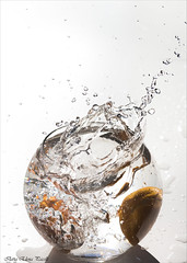 Splash tangerine (Elanor82) Tags: canon eos 5d mark3 mrk3 mk3 85mm splash stilllife still life tangerine mandarino water acqua drops gocce pitcher carafe jug white background schizzo spruzzo