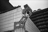 (ニノ Nino) Tags: 35mm 35 mm film analog analogue cctv london uk england barbican centre center ilford delta 400