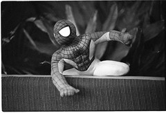 Spiderman lurking in the bushes ready to pounce (Joshua Perera Photography) Tags: 50mm rodinal canon ae1 spiderman bushes plants chair superhero stuffed toy fun play playing around action figure