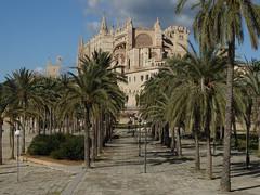 Catedral de Mallorca, Seu de Mallorca (Sergi Coll) Tags: fb architecture arch fountain old town palace landmark column steeple bell tower building exterior balears famous place square catedraldemallorca seudemallorca