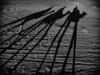 Sunset shadows (Filippo Secchi) Tags: ergchebbi shadows sunset camels