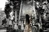 A Stairway To Heaven (Jim DeFazio) Tags: cemetery graveyard art spirit ghost apparition stairwaytoheaven stairway steps ghostly eerie scary graves gravestones supernatural spiritual metaphysical blackandwhite surreal gothic