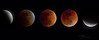 Super Blood Moon (Dive Girl DSLR) Tags: moonsurface mooncraters lunar fullmoon cycle crescentmoon moon celestial eclipse lunareclipse moonlight orbit phase night nightsky bloodred red astrophotography astrophotograph cosmos cosmic galaxy science supermoon big nature natural dramatic