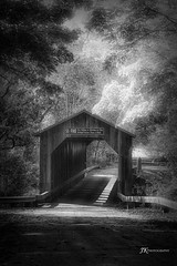 Timeless Beauty (James Korringa) Tags: covered bridge lowell michigan bw trees