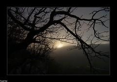 Soleil levant au dessus des falaises du Bois du Clos - Doulaize (francky25) Tags: soleil levant au dessus des falaises du bois clos doulaize brume paysage franchecomté doubs