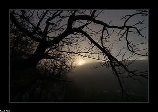 Soleil levant au dessus des falaises du Bois du Clos - Doulaize