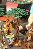 Exhibiting at Brickmania Seneffe Belgium (Yobb Rschp) Tags: lego exhibition dino dinosaure medieval moc army fantasy orc troll triceratops trex ptero tree brickforge brickwarriors altbricks beast brickmania seneffe belgium castle fantasyera