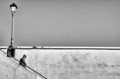 urban lines (Claudia Merighi) Tags: blackandwhitephotos blackandwhiteonly blancoynegro blackandwhite blackwhitephotos whiteblack blackandwhitephotography monochromatic bnbwbwbiancoenero streetphotography street streetphoto lines geometry sky lamp fotografiadistrada fotografiacallejera fotodistrada fotografiederue schwarzweisfotos strassenfotografie claudiamerighi ricohimages bw