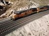 (riptyd64) Tags: trains unionpacific bnsf choochoo train