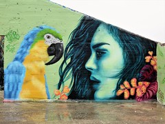 Plur & Kitsune / Dok Noord - 19 feb 2018 (Ferdinand 'Ferre' Feys) Tags: gent ghent gand belgium belgique belgië streetart artdelarue graffitiart graffiti graff urbanart urbanarte arteurbano ferdinandfeys plur