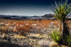 Volcanic Landscape (Jason DM) Tags: photooftheday landscape lava volcano california desert mojave