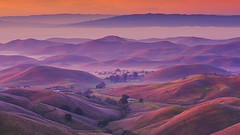 Layers (Jaykhuang) Tags: sunrise lowfog rollinghills layers farmland eastbay bayarea trivalley livermore jayhuangphotography
