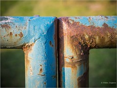 Trust without the letter T is rust (Peter Jaspers (sorry less time to comment)) Tags: frompeterj© 2018 olympus omd em10 zuiko 1240mm28 fence fenced hff happyfencefriday rust colors roest dof giersbergen hike loonseendrunenseduinen 52in2018 38somethingwithrust