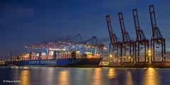 COSCO Shipping Aries - 23011801 (Klaus Kehrls) Tags: hamburg hamburgerhafen schiffe containerschiffe terminaltollerort kräne spiegelung nachtaufnahme elbe flüsse