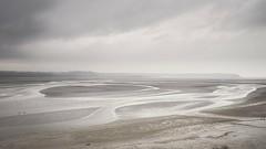 couleurs monochromes une fin de journée d'hiver en Baie de Saint Brieuc (Patrick Doreau) Tags: baie bay saintbrieuc côtesdarmor bretagne brittany marée tides grey gris ciel sable vase groupenuagesetciel