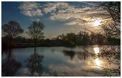 de bon matin (Pascale_seg) Tags: lanscape paysage matin aube aurore soleil sunset clouds sky riverscape arbre tree nuage reflets reflection mirror river étang moselle lorraine france